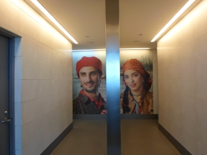 New Dehli airport toilet sign 2