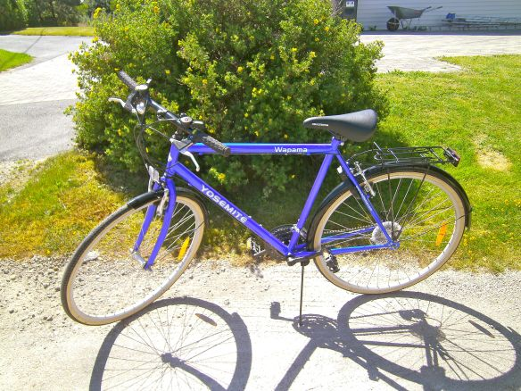 A typical bike for guys